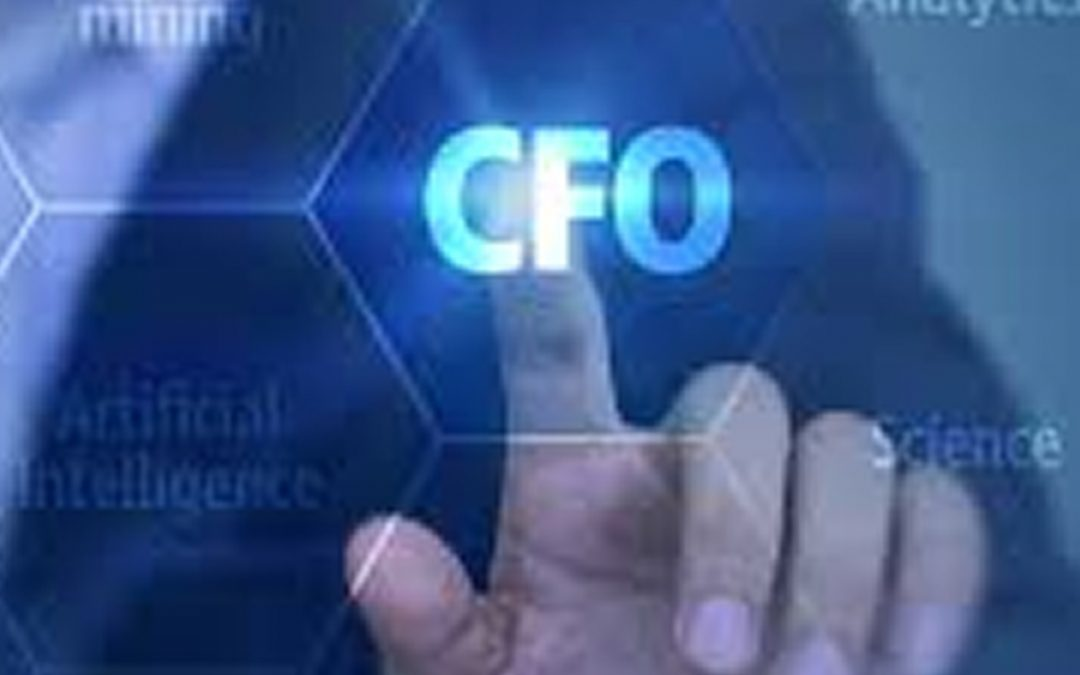 Deployed an interim CFO in an indian it services company